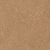 Camel Marmoleum Linoleum Click Single Tile Floating Flooring - Green Home Floors