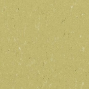 Forbo Marmoleum Piano Sheet-Meadow