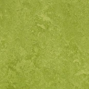 Forbo Marmoleum Decibel Sheet-Green