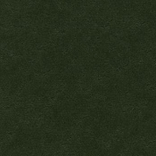 Forbo Marmoleum Uni/Cirrus Sheet-Bottle Green