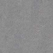 Eternity Forbo Marmoleum Linoleum Cinch Loc Tiles 12x36