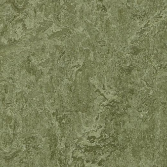 Pine Forest Forbo Marmoleum Linoleum Cinch Loc Tiles 12x36