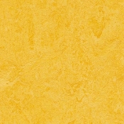 Lemon Zest Forbo Marmoleum Linoleum Cinch Loc Planks 12x36