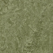 Pine Forest Forbo Marmoleum Linoleum Cinch Loc Planks 12x36
