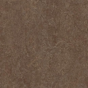 Walnut Forbo Marmoleum Linoleum Cinch Loc Planks 12x36