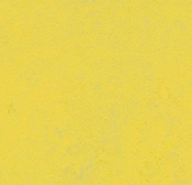 Forbo Marmoleum Concrete Sheet-Yellow Glow