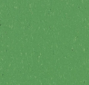 Forbo Marmoleum Piano Sheet-Nettle Green