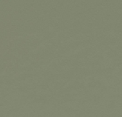 Forbo Furniture Linoleum Olive 4184